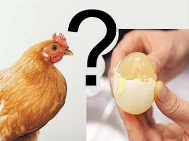 20140527112733-huevo-c-pia.jpg